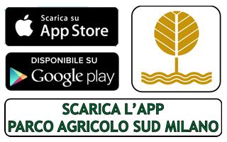 MIRASOLE NEL PARCO AGRICOLO SUD